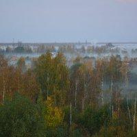 Осень...Туман... :: Константин Жирнов