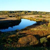 Осень в Тригорском :: Ирина Шурлапова