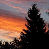 Пожар небес уходящего дня :: Елена Пономарева