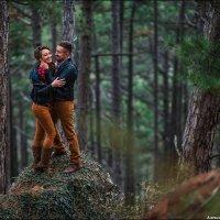 Волшебный лес :: Алексей Латыш