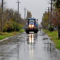 Дождливая погода :: Владимир