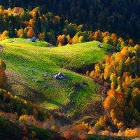 Тихо шла по склонам гор осень золотая :: Сергей Месилов