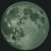Луна :: Юлия Мешкова