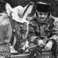 Старость - не радость... :: Максим Гуревич