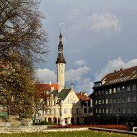Tallinn cо старым Томасом на шпиле :: Marina Pavlova