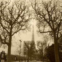 Париж ..Париж :: Galina Belugina