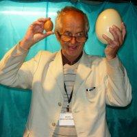 1 страусиное яйцо заменяет 7 куриных! :: Надежда