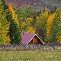 Осенний вид в Хохловке :: Алексей Сычёв