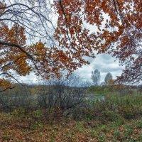 Поздняя осень :: Николай Андреев