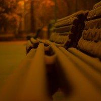 Лавочки в сквере :: Андрей Наумов