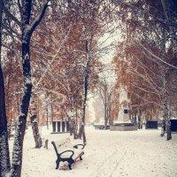 Снег в парке 2 :: Вячеслав Баширов