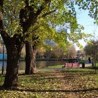 парк в октябре... :: Валентина. .