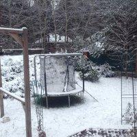 Вот и зима... :: Светлана Ященко
