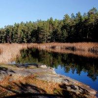 Природа Швеции :: Swetlana V