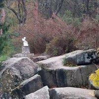 Уголок Софиевского парка со статуей Амура. :: Наталья