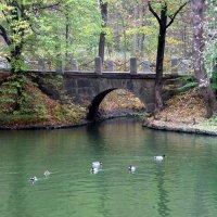 Венецианский мост в Софиевке. :: Наталья