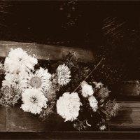 Цветы запоздалые... вар.2 (ретро).. :: Валерия  Полещикова