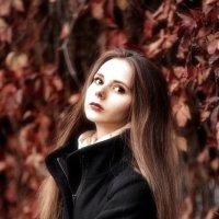 Золотая осень :: Анатолий Шулков