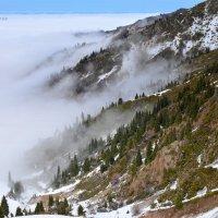 Туман преображает горные склоны, делает их таинственными, загадочными... :: Anna Gornostayeva