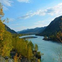 Осень по берегам Катуни. :: Валерий Медведев