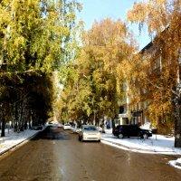 И осень и зима. :: Прима Игорь Кондратьевич