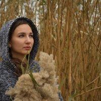 Задумчивая осень :: Ксения Черногорова