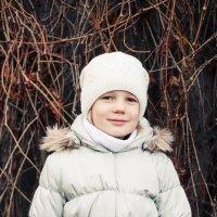 Последний день перед снегом :: Ирина Ширма