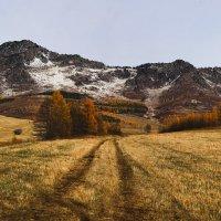 Чудеса, это осень в горах 3 :: Сергей Жуков