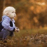 Золотая осень :: Маргарита