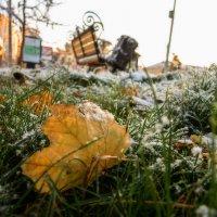 Первый снег :: Виталий Павлов