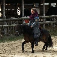 Пони тоже кони. :: Сергей Рубан