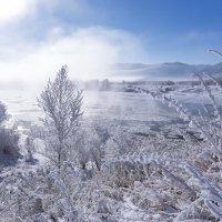Морозное утро над Катунью :: Оксана Арискина