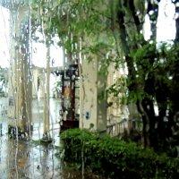 Абхазия прекрасна даже под дождем...Я еду посмотреть её величие природы :: Елена Ом