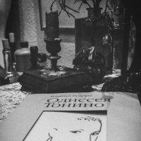Предметы. Книга. :: Ольга Мансурова