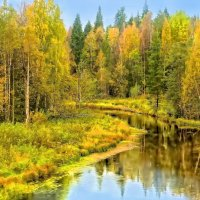 Осенние мотивы :: Виктор Заморков