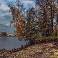 Прогулка на Каменном острове :: Валентин Яруллин