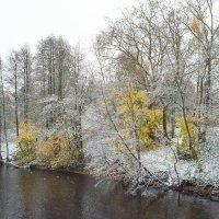 Снег в октябре 20 :: Виталий