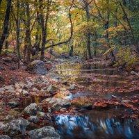 Крымская осень :: Sergey Bagach