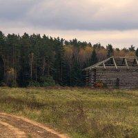 old barn :: Виталий Устинов