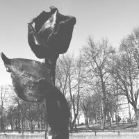 "Декоративная скульптура ""Роза"" :: IRINA TIMONINA"