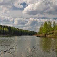 Весна на лесном озере :: Александр Березуцкий (nevant60)