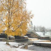 Снег в октябре 21 :: Виталий