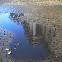после дождя :: Евгений Гузов