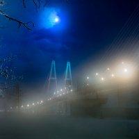 Вантовый мост :: Владимир Миронов