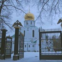 Фёдоровский собор в Пушкине :: Елена