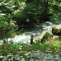 У бурной реки..или Тихая вуаль печали.. :: ЕВГЕНИЯ
