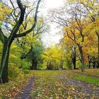 Городской парк в октябре :: Маргарита Батырева