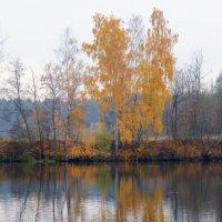 Отражение осени. :: Наталья Соколова