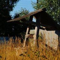 Забытый колодец :: Ирина Шурлапова