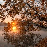 Восход солнца на Солнечном острове :: Александр Плеханов